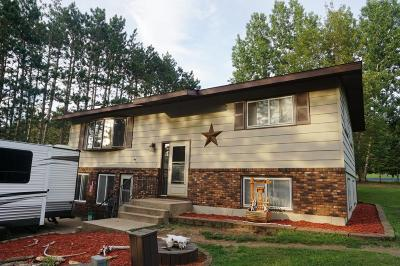 Pepin County Single Family Home For Sale: N5694 County Road F