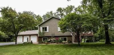 Hennepin County Single Family Home For Sale: 6740 Sioux Trail