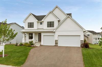Chisago County, Washington County Single Family Home For Sale: 4091 Lady Slipper Road