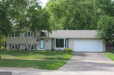 Apple Valley Single Family Home For Sale: 1006 Whitney Drive