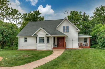 Ellsworth Single Family Home For Sale: 131 Bork Street