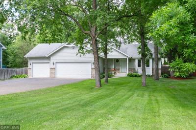 Andover Single Family Home For Sale: 2317 S Coon Creek Drive