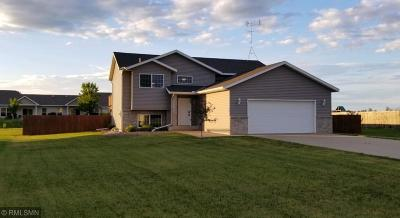 Rice Single Family Home For Sale: 1409 3rd Street SW