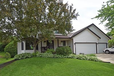 Lakeville Single Family Home Contingent: 17390 Jalisco Lane