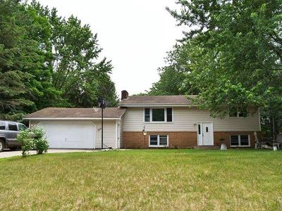 East Bethel MN Single Family Home For Sale: $195,000