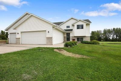 Meeker County Single Family Home For Sale: 59952 279th Street