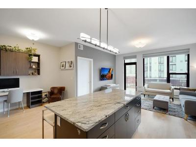 Minneapolis MN Rental For Rent: $2,595