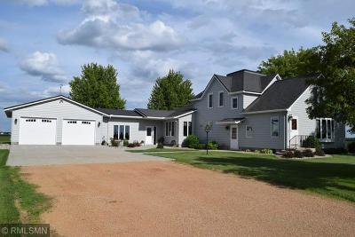 Sibley County Single Family Home For Sale: 40647 296th Street