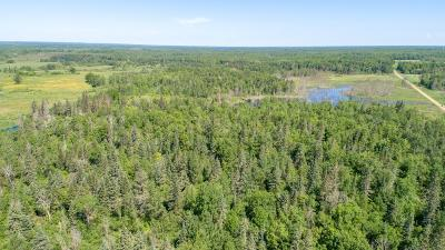 McGregor Residential Lots & Land For Sale: 18835 Driftwood Street