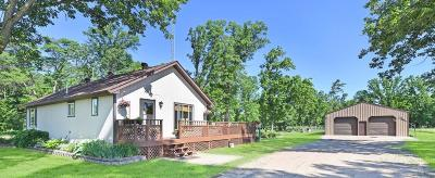Single Family Home For Sale: 9992 County Road 13