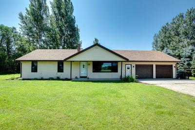 Sibley County Single Family Home For Sale: 10563 182nd Street