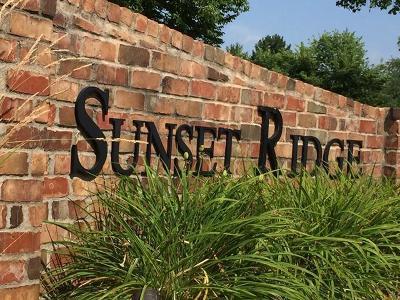 Saint Louis Park Condo/Townhouse For Sale: 2050 Ridge Drive #14