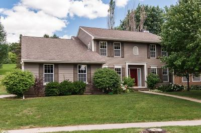 Rochester MN Single Family Home For Sale: $379,900