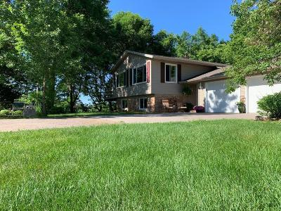 Wright County Single Family Home For Sale: 11645 State Highway 24 NW