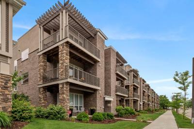 Saint Louis Park Condo/Townhouse For Sale: 3986 Wooddale Avenue S #201