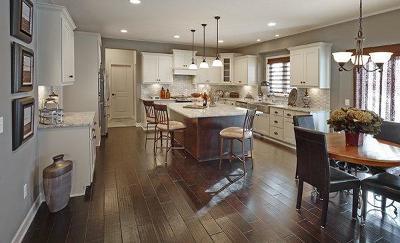 Rosemount Single Family Home For Sale: 13326 Aulden Avenue
