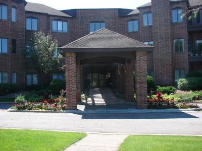 Hennepin County Condo/Townhouse For Sale: 3531 Oakton Drive #2004