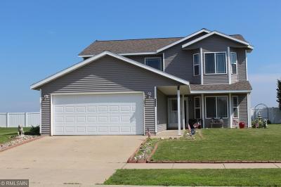 Saint Cloud Single Family Home For Sale: 6725 24th Street N