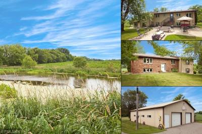 Stearns County Single Family Home For Sale: 9103 Athman Road