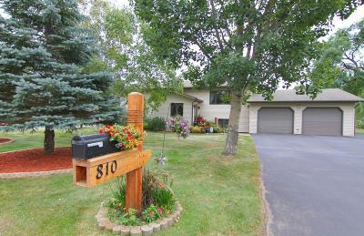 Staples Single Family Home For Sale: 810 Prairie Avenue NE