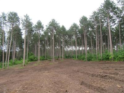 Cambridge Residential Lots & Land For Sale: (Lot 4) Salish Court NW