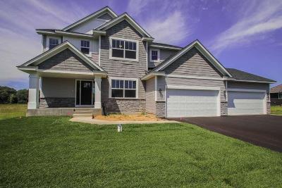 Ham Lake Single Family Home For Sale: 17346 Polk Street NE