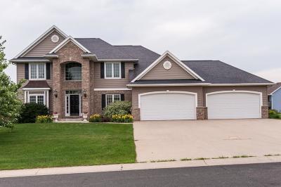 Pine Island Single Family Home For Sale: 2020 8th Street SE