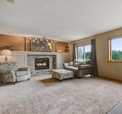 Savage Single Family Home For Sale: 6232 S Park Drive