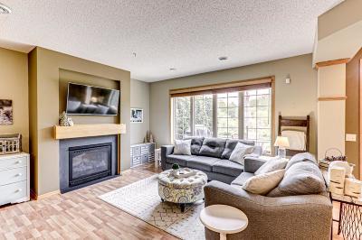 Blaine Condo/Townhouse For Sale: 11780 Vermillion Street NE #D
