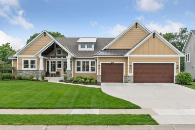 Eden Prairie Single Family Home For Sale: 9710 Sky Lane
