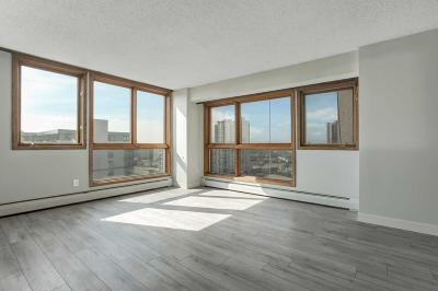 Minneapolis Condo/Townhouse For Sale: 433 S 7th Street #1714