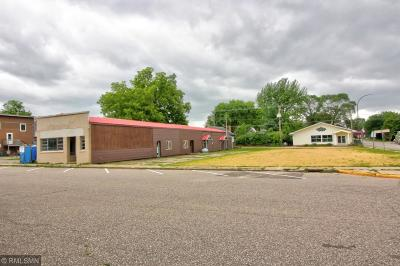 Pepin Commercial For Sale: 210 Lake Street