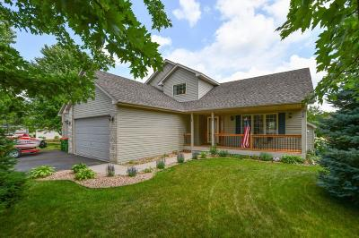 Andover Single Family Home For Sale: 224 139th Lane NW