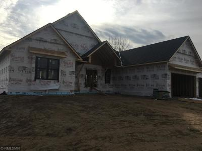 Ham Lake Single Family Home For Sale: Xxx 162nd Avenue NE