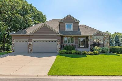 Elk River Single Family Home For Sale: 17897 Elgin Street NW