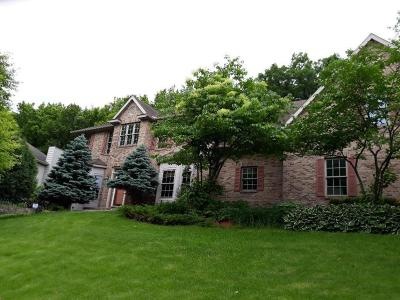 Rochester, Rochester Twp Single Family Home For Sale: 2002 Baihly Estates Lane SW