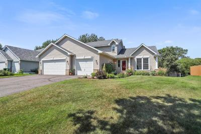 Coon Rapids Single Family Home For Sale: 131 117th Avenue NW