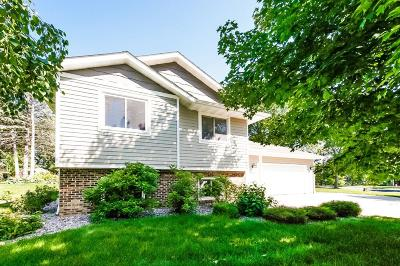 Eagan Single Family Home For Sale: 4566 S Hay Lake Road