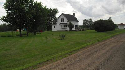 Mora Single Family Home For Sale: 2535 Ivory Street