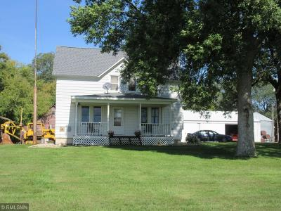Kandiyohi County Single Family Home For Sale: 13372 195th Avenue SW
