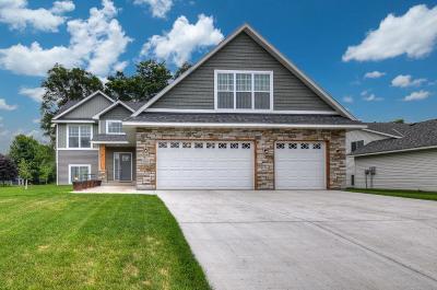 Blaine Single Family Home For Sale: 9089 Xylite Street NE