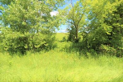 Sauk Centre MN Residential Lots & Land For Sale: $20,000