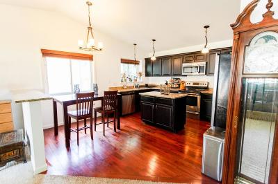Eagan Single Family Home For Sale: 4260 Sun Cliff Road