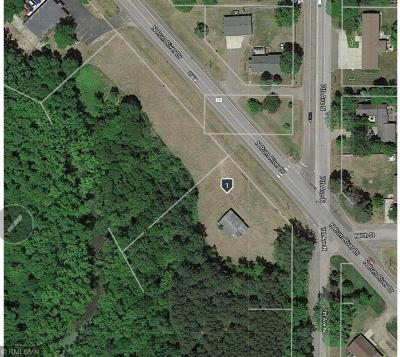 Residential Lots & Land For Sale: 801 N Rum River Drive