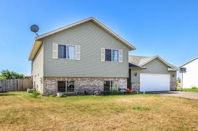 Single Family Home For Sale: 1308 3rd Street SW