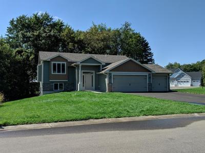 Ham Lake Single Family Home For Sale: 3525 Crosstown Boulevard NE