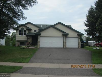 Wyoming Single Family Home For Sale: 25770 Goldfinch Avenue