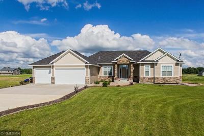 East Bethel Single Family Home For Sale: 23847 Marmon Street NE