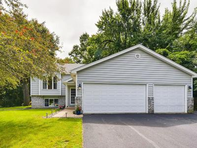 Eagan Single Family Home For Sale: 4196 Reading