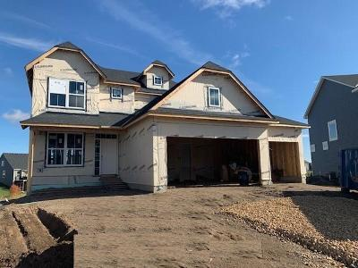 Lakeville Single Family Home For Sale: 18136 Greyhaven Path